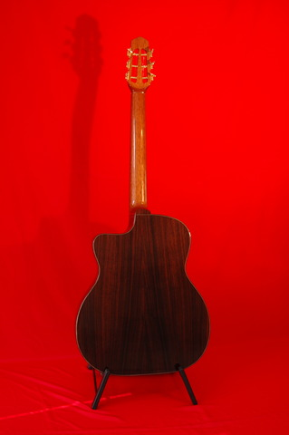 Solid woods Back is Indian Rosewood